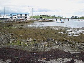 Strangford Lough Yacht Club - geograph.org.uk - 752468.jpg