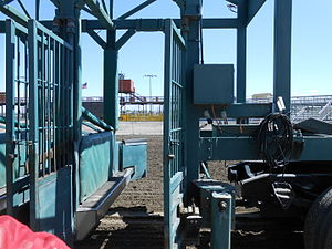 Starting gate - Starting gate detail, looking in from front to back