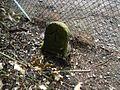 Sussex-Hampshire Boundary Stone 2.JPG