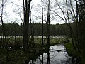 Sweden. Stockholm County. Tyresta National Park 001.JPG