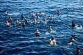 Swim call 150315-N-EI973-027.jpg