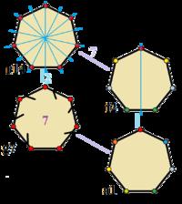 Heptagon Wikipedia