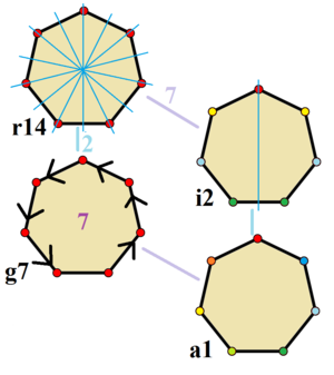 Heptagon - Symmetries of a regular heptagon. Vertices are colored by their symmetry positions. Blue mirror lines are drawn through vertices and edges. Gyration orders are given in the center.
