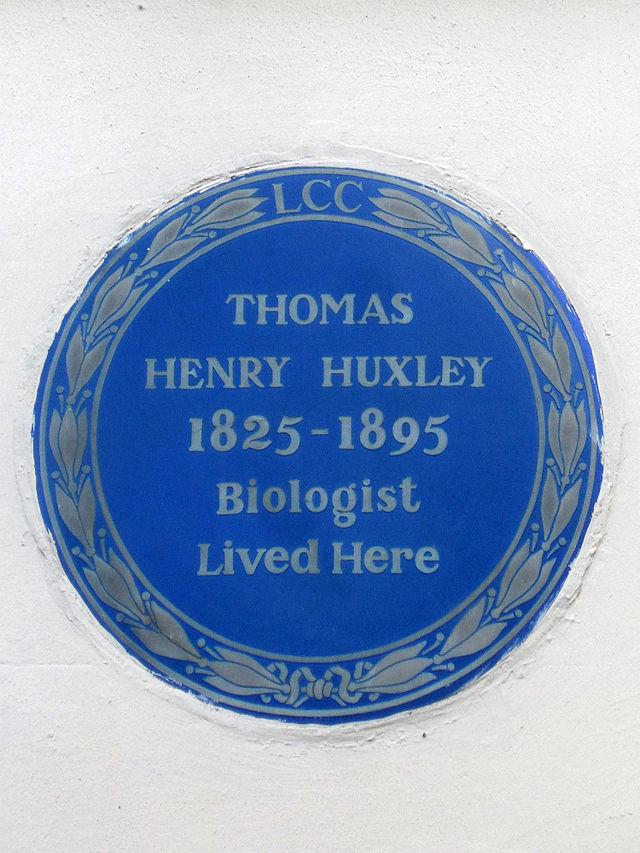 Thomas Henry Huxley blue plaque - Thomas Henry Huxley 1825-1895 biologist lived here