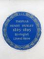 THOMAS HENRY HUXLEY 1825-1895 Biologist Lived Here.jpg