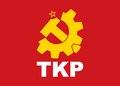 TKP flag.pdf