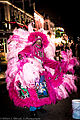 Tail feather - Mardi Gras Indian in the French Quarter at night.jpg