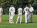 Takeley CC v. South Loughton CC at Takeley, Essex, England 089.jpg