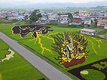 Tanbo art in Inakadate 2012 B.jpg