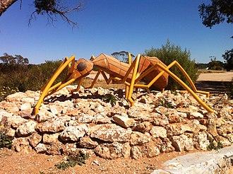 Nothomyrmecia - Sculpture of a Nothomyrmecia ant in Poochera