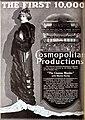 The Cinema Murder (1919) - 5.jpg