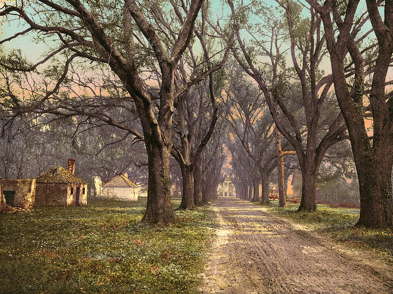 File:The Hermitage plantation, Savannah, Georgia, 1900.jpg ...