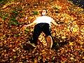 The Leaf Angel (5070124386).jpg