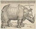 The Rhinoceros MET DP816484.jpg