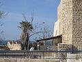 The old port of Jaffa (4158427422).jpg