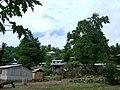 Timor Leste 2010 - Com village.jpg