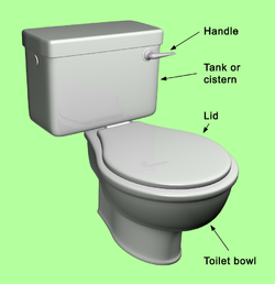 main parts of a toilet