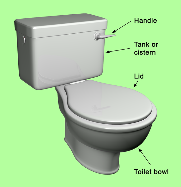 toilet parts. Other resolutions  232 240 pixels 464 480 File Toilet full parts png Wikimedia Commons