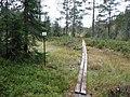 Tolvmannsmyr-lite-Statens-naturoppsyn.jpg