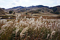 Tonomine highland Kamikawa Hyogo pref Japan23bs5.jpg