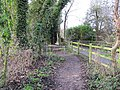 Towpath from the track - geograph.org.uk - 1640469.jpg