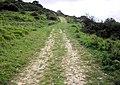 Track, Tyneham Farm - geograph.org.uk - 1521798.jpg