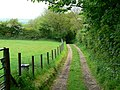 Track to the track to Bancyffynnon - geograph.org.uk - 1316407.jpg