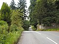 Tree-lined road by Dupplin estate - geograph.org.uk - 25287.jpg