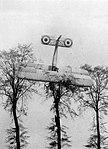 Tree-point Landing.jpg