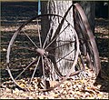 Tree Farm, Iron Wheels 12-8-12 (8298285952).jpg