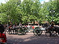 Trooping the Colour 2009 036.jpg
