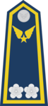 Trung Tá-Airforce 2.png
