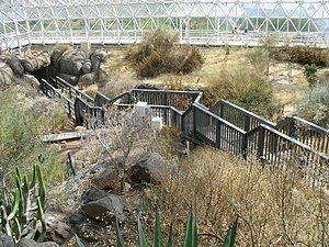 Biosphere 2 - The fog desert section of Biosphere in 2005