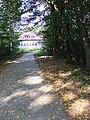 Tuczępy, pozostałości parku dworskiego, XVIII, XIX XX w., 642336 (1).JPG