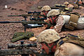 U.S. Marine Corps scout snipers with Weapons Company, 1st Battalion, 4th Marine Regiment, 13th Marine Expeditionary Unit (MEU) aim Nov. 3, 2013, in Djibouti 131103-M-MC013-933.jpg