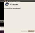 Ubuntu 10.04 gxine3.png