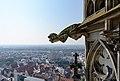 Ulm Münster Westturm Wasserspeier 01.jpg