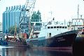 Un chalutier de pêche industrielle le ''Flandre''.jpg