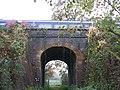 Under the railway - geograph.org.uk - 1583393.jpg