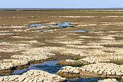 Uniek door eb en vloed steeds wisselend kweldergebied. Locatie, Noarderleech Provincie Friesland 22.jpg