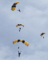 United States Army Parachute Team.jpg