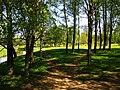 Uzvaras parks - panoramio (18).jpg