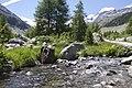 Vadret da Morteratsch - panoramio (41).jpg