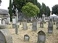 Vecchio cimitero ebraico di firenze 09.JPG