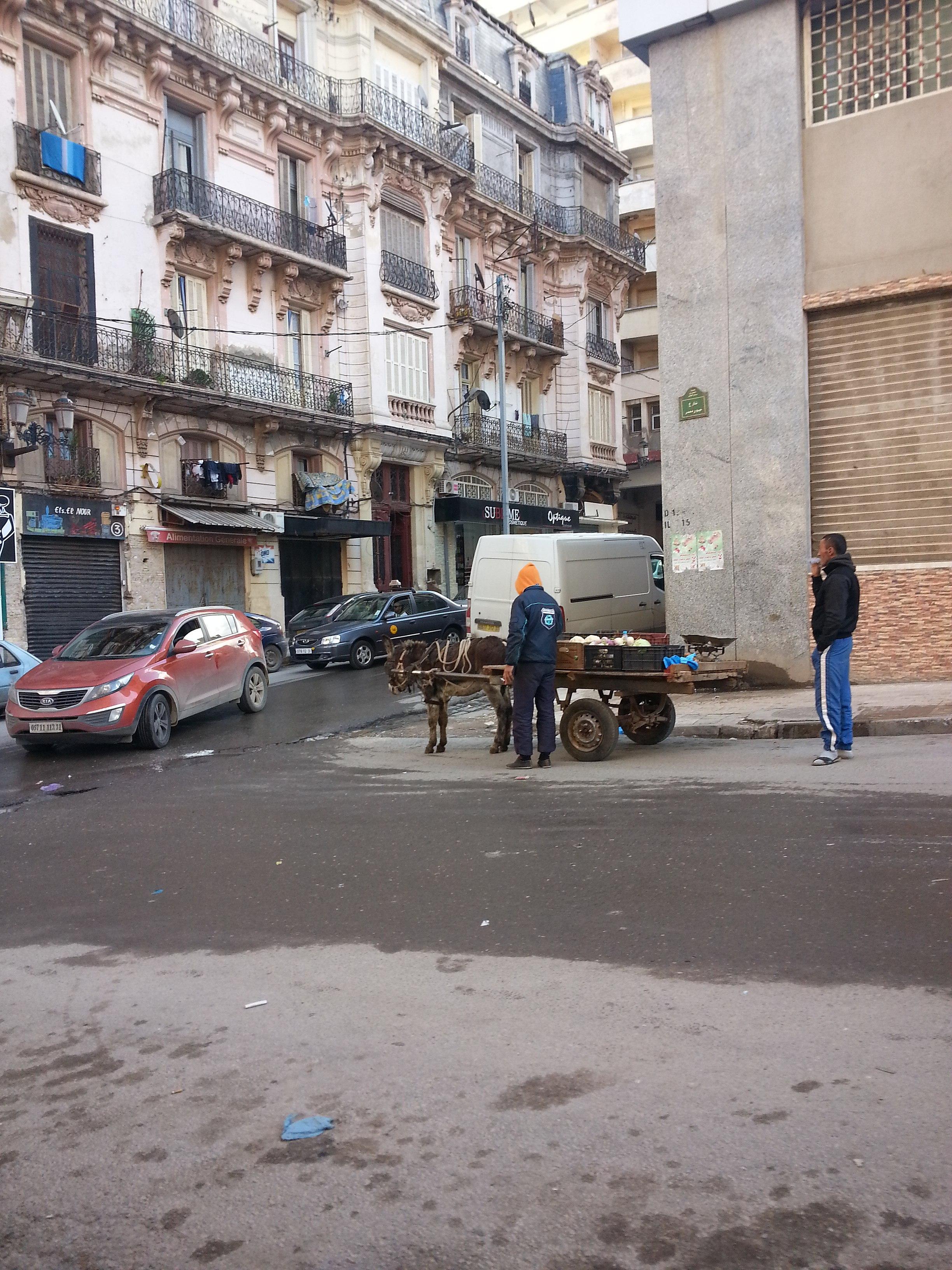 Caut casnice in Oran