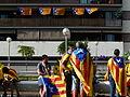 Via Catalana - després de la Via P1200493.jpg