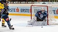 Vienna Capitals vs Fehervar AV19 -200-7.jpg