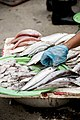 Vietnamese Fish Market (Unsplash).jpg
