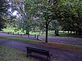 View from the bench (OpenBenches 67-1).jpg
