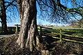 View near Crewood Hall - geograph.org.uk - 1144110.jpg